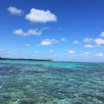 Saltwater fly fishing, fly fishing and dreams bonefish, permit, tarpon, fly fishing